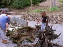 อัศวินม้าไม้ เคยเห็นยังจ๊ะ!! (2)