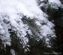 Canada Winter 2007