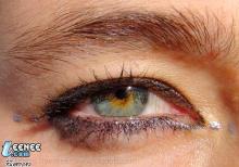 ตาแบบไหนที่คุณชอบ
