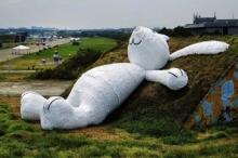 น่ารัก! กระต่ายยักษ์นอนชมพระจันทร์