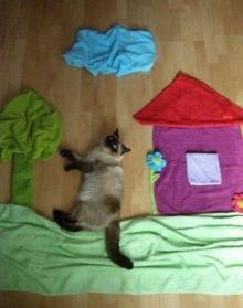น่ารักอะ! เมื่อน้องแมวเป็นส่วนหนึ่งของงานศิลปะ