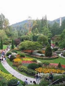 สวนดอกไม้สวยๆ ที่ CANADA