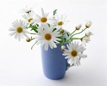 Flowers สวยจังเลย!!~