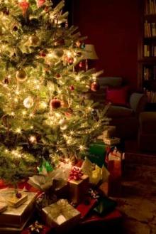 Christmas Tree สวยดีจัง!!