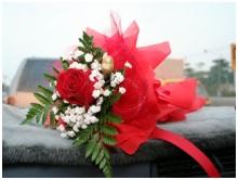 ดอกไม้กุหลาบต้อนรับ valentine