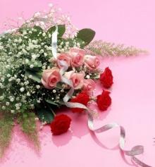 --[ดอกไม้แด่สาวๆ]--