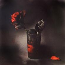 Immortal Black Roses