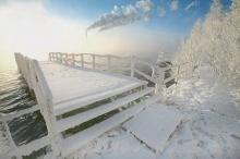 Beautiful Winter 1