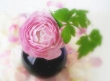 ดอกไม้โฟกัสนุ่มๆ 1