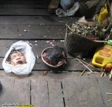 ฆ่าตัวเอาหัวใส่กะละมัง!!