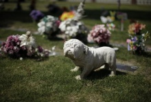 ที่ฝังศพสัตว์เลี้ยง ในสหรัฐอเมริกา