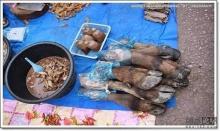 อาหารแปลก ๆ ตามตลาด ประเทศเพื่อนบ้าน