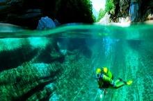 แม่น้ำคริสตัล ที่ไม่มีสิ่งมีชีวิตอยู่