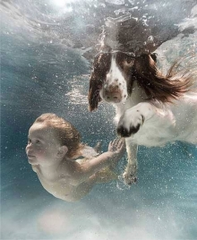 ถ่ายภาพใต้น้ำที่น่าทึ่ง!!!