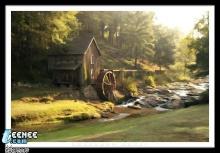 บ้าน กลาง ป่า แสน สวย