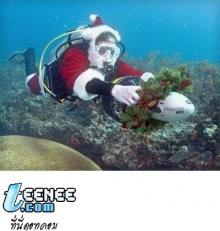 ชีวิตของซานต้า..โฮะ..โฮะ..!!!