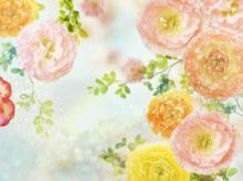 รูปดอกไม้ออกการ์ตูนนะ