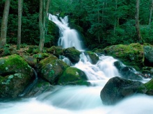 Great Smoky Mountain (Tennessee)