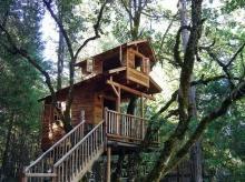 ลิ้มรสธรรมชาติไปกับ บ้านบนต้นไม้