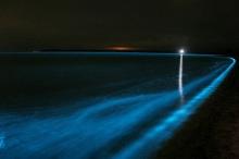 มีความสุขไปกับทะเลเรืองแสง