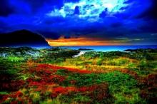 ภาพสวยด้วยสีสันแห่งธรรมชาติ