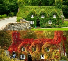 การเปลี่ยนแปลงที่สวยงามของธรรมชาติกับสถานที่เดิม