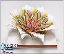 Paper Art (pop-up)