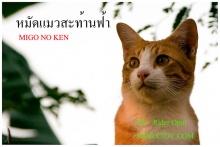 หมัดแมวสะท้านโลก...!!! ตอน 1