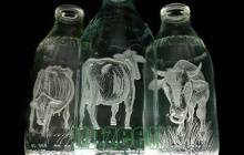 Art on Milk Bottle