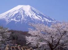 Mount Fuji •°•.° ღ.