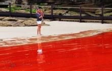ทะเลสีแดง ปรากฏการณ์สุดแปลก ทะเลกลายเป็นสีแดง