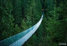 สะพานแขวนที่น่ากลัว