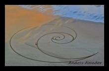 ศิลปะจากหาดทราย
