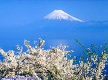 ภูเขาไฟฟูจิ #1