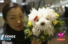 จัดดอกไม้ให้กลายเป็นหมา อิอิ