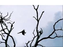 สุดยอดภาพที่สวยที่สุด จาก National Geographics2