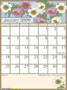 Calander 2009 ปฏิทินดอกไม้ปี 2552