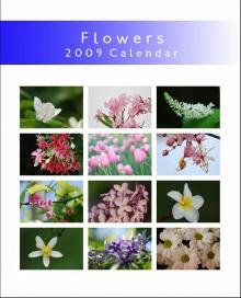 ปฏิทินดอกไม้สดใส ไฉไล สวยงาม ปี 2009