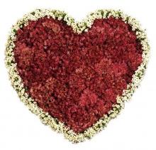 เมื่อดวงใจมีรัก .•°•.° ღღღ 2