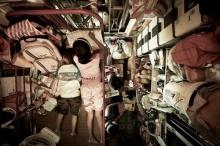 ชีวิตอึด(อัด) ในฮ่องกง