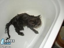 มาอาบน้ำกันเถอะ