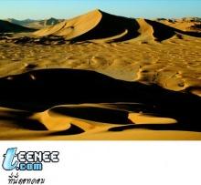 ทะเลทราย...ใครว่าน่ากลัว