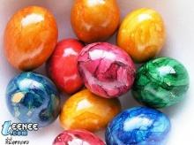 เปลือกไข่สวยๆ