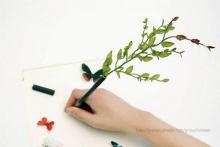 Flowers Pen!!