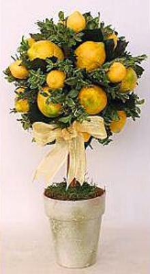 จัดดอกไม้สไตล์ Topiary ..1