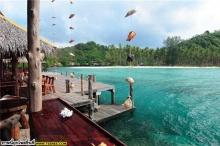 เกาะหม้อดำ (ใกล้เกาะช้าง)