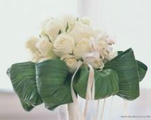 ดอกกุหลาบสีขาวสะอาด