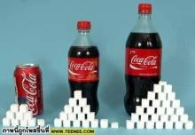 SUGAR RATIO (ปริมาณน้ำตาลในอาหารแต่ละชนิด)*1