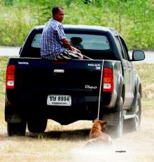 ประจานด้วยภาพ! ทารุณหมา ผูกเชือกลากวิ่งตามรถ จนขาดใจตาย