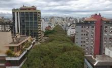 ถนนสีเขียว ถนน Rua de Carvalho Goncalo บราซิล